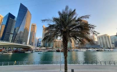 Alquiler Villa Dubai Marina