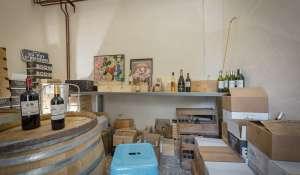 Venta Casa de campo Aix-en-Provence