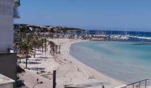 Venta Inmueble Palma de Mallorca