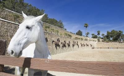 Venta Palacete Sant Antoni de Portmany