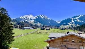 Venta Piso Gstaad