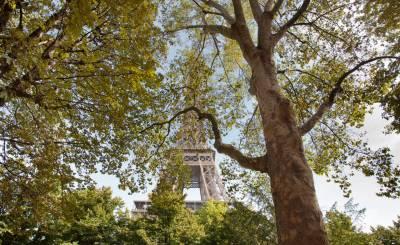 Venta Piso Paris 7ème